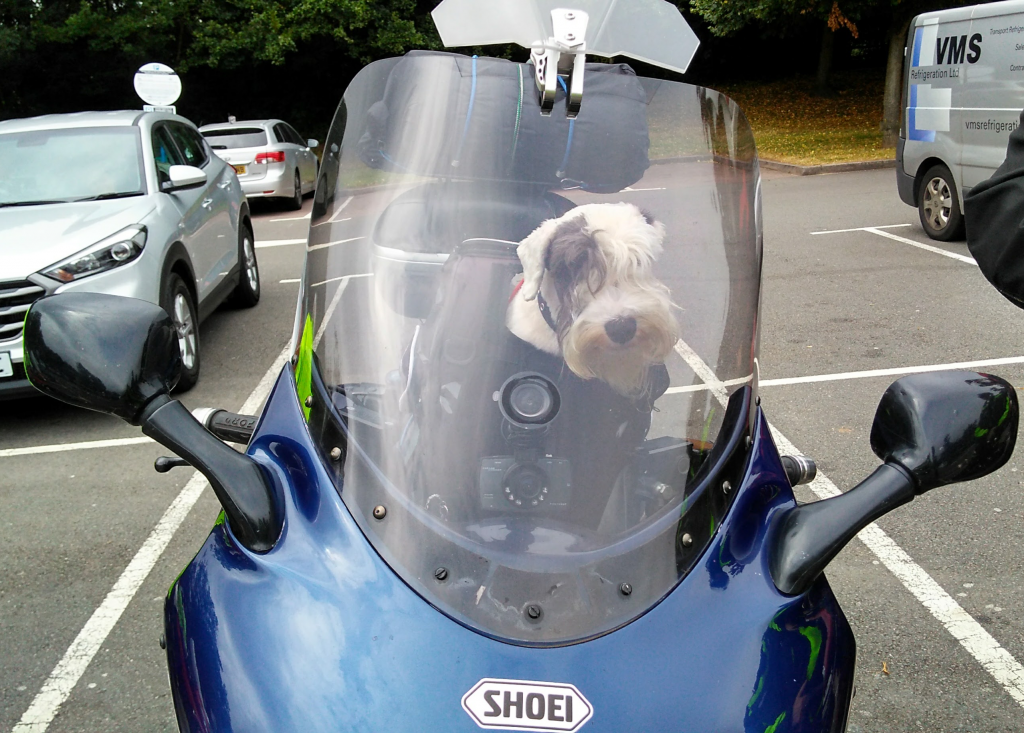 Dog Biker! - Paul Conway